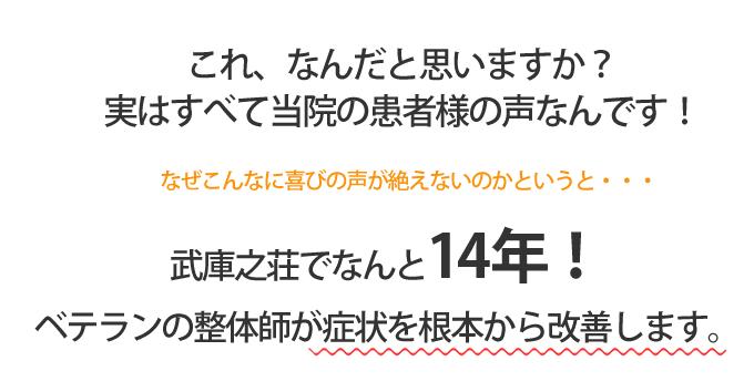 武庫之荘でなんと14年!ベテランの整体師が症状を根本から改善します。